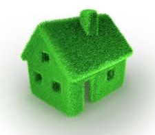 5 Must-Have Green Home Features