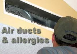 How the Air Ducts in Your Home Can Contribute to Allergy Problems