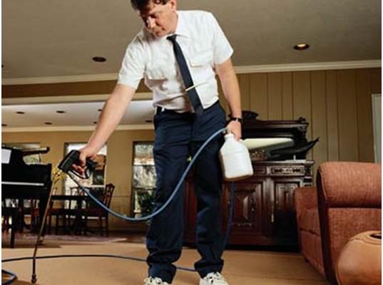 Carpet Cleaning for better Hygiene
