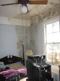 Prevent Home Mold Growth in Winter